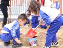 """滨北学区开展""""爱绿、护绿、亲绿""""系列植树节主题教育活动"""