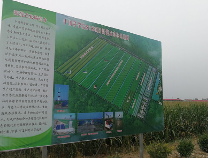 黄河三角洲(滨州)国家农业科技园区新范式农场通过中科院验收