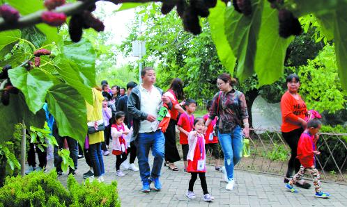 第七届中国·无棣千年古桑旅游文化节开幕