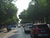 提示!滨州交警将清除渤海九路停车泊位 重点管理滨医路段拥堵成绩