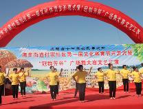 无棣海丰街道多项活动喜迎首届农民丰收节