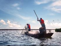【央视频直播】山东滨州:大丰收!70万亩盐田虾正在收获