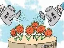 """无棣县税务局""""护苗""""行动为小微企业添活力"""