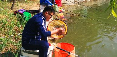 10月1日樱花山垂钓开始了!水美鱼肥等你来!