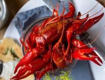 滨州人吃小龙虾竟然有这么多误区!快看看到底应该怎样吃...