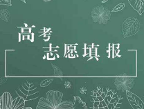 【专题】滨州网2019高考志愿填报信息汇(持续更新……)
