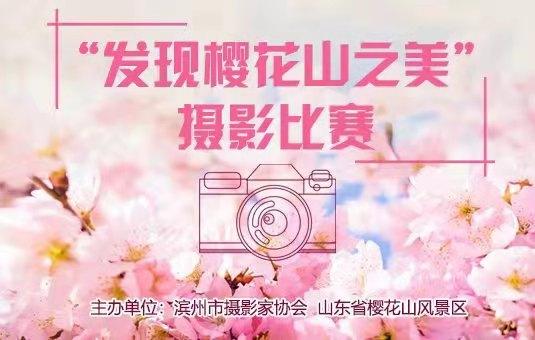 """""""发现樱花山之美""""摄影比赛"""