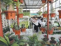 别人家的小学!博兴一小专门建起植物科技立体生态馆