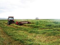 滨州市牧草收割机械展示现场会在无棣召开