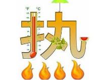 """明日入伏 滨州进入""""烧烤""""模式气温最高达39℃"""